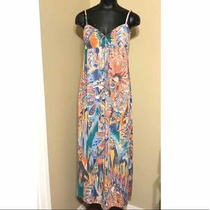 Alyn Paige Multi-Color All-Over Print Maxi Dress